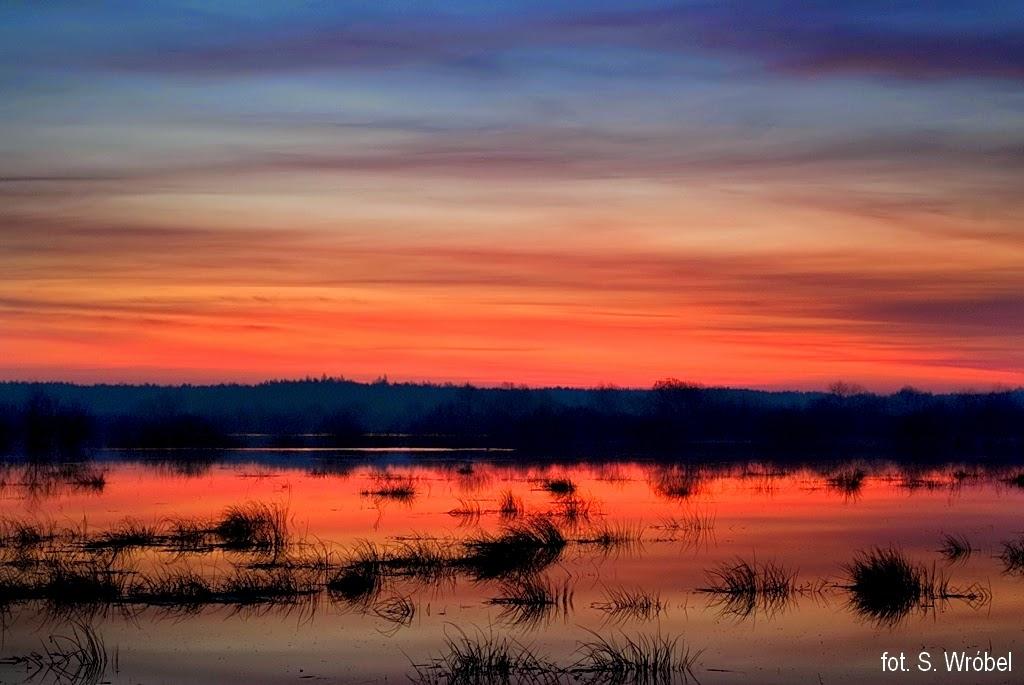wschód słońca na Polesiu