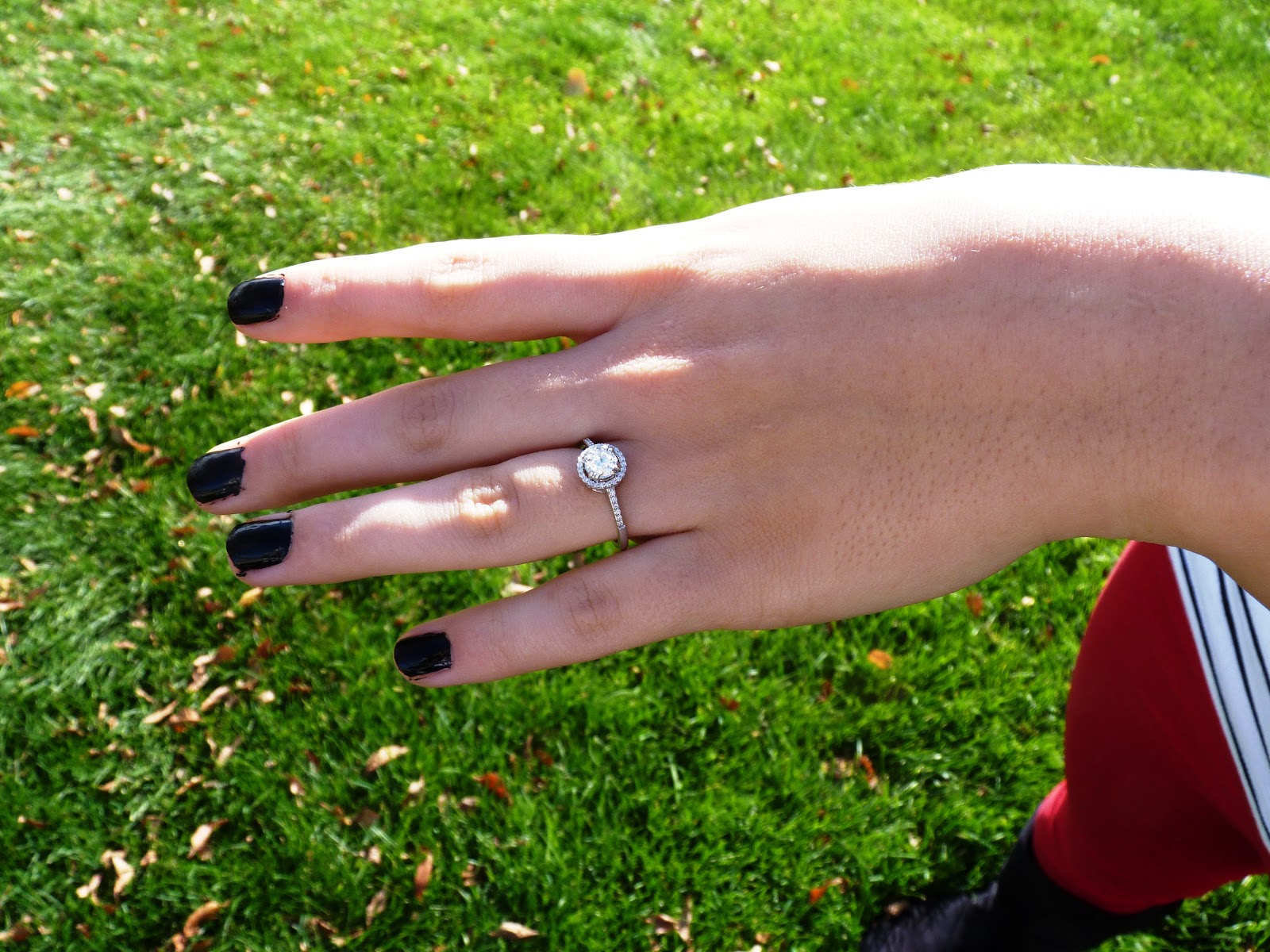 The Dancing Cow: My Engagement Ring!!