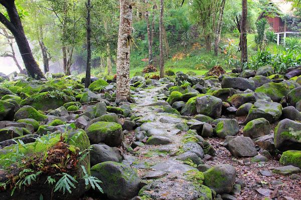 Sendero de trekking en las Cataratas Tad Hang