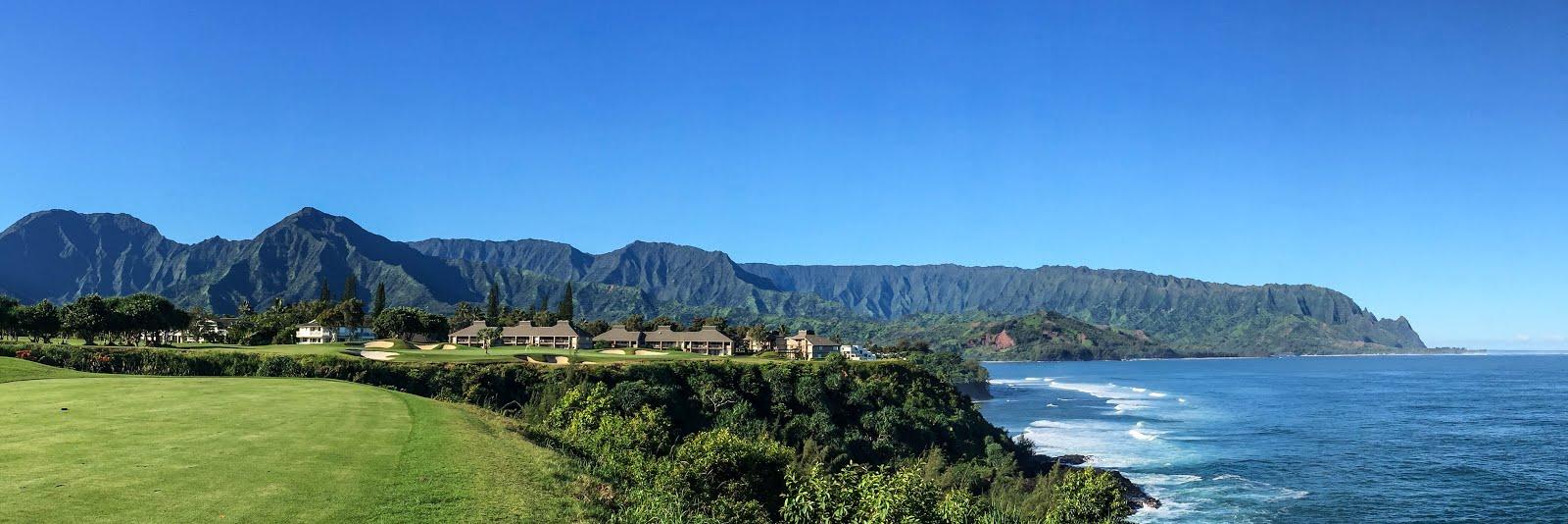 kauai real estate for sale princeville homes for sale