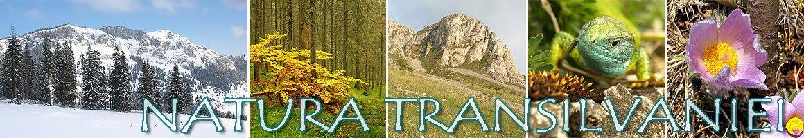 Natura Transilvaniei
