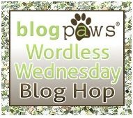 Blog Paws wordless Wednesday blog hop logo.