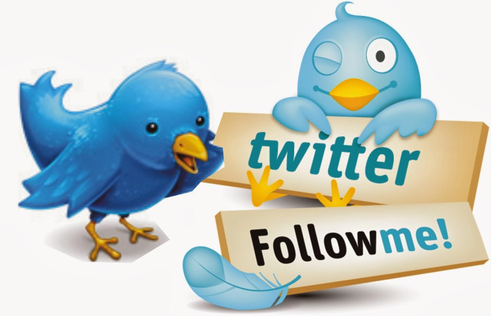 Cara Mendapatkan Follower Twitter Dengan Mudah dan Gratis