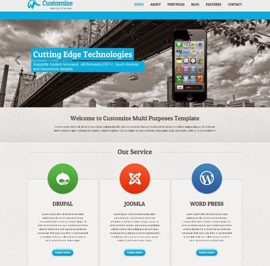 Customize Fully Repsonsive WordPress Theme