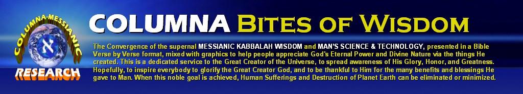 COLUMNA BITES OF WISDOM