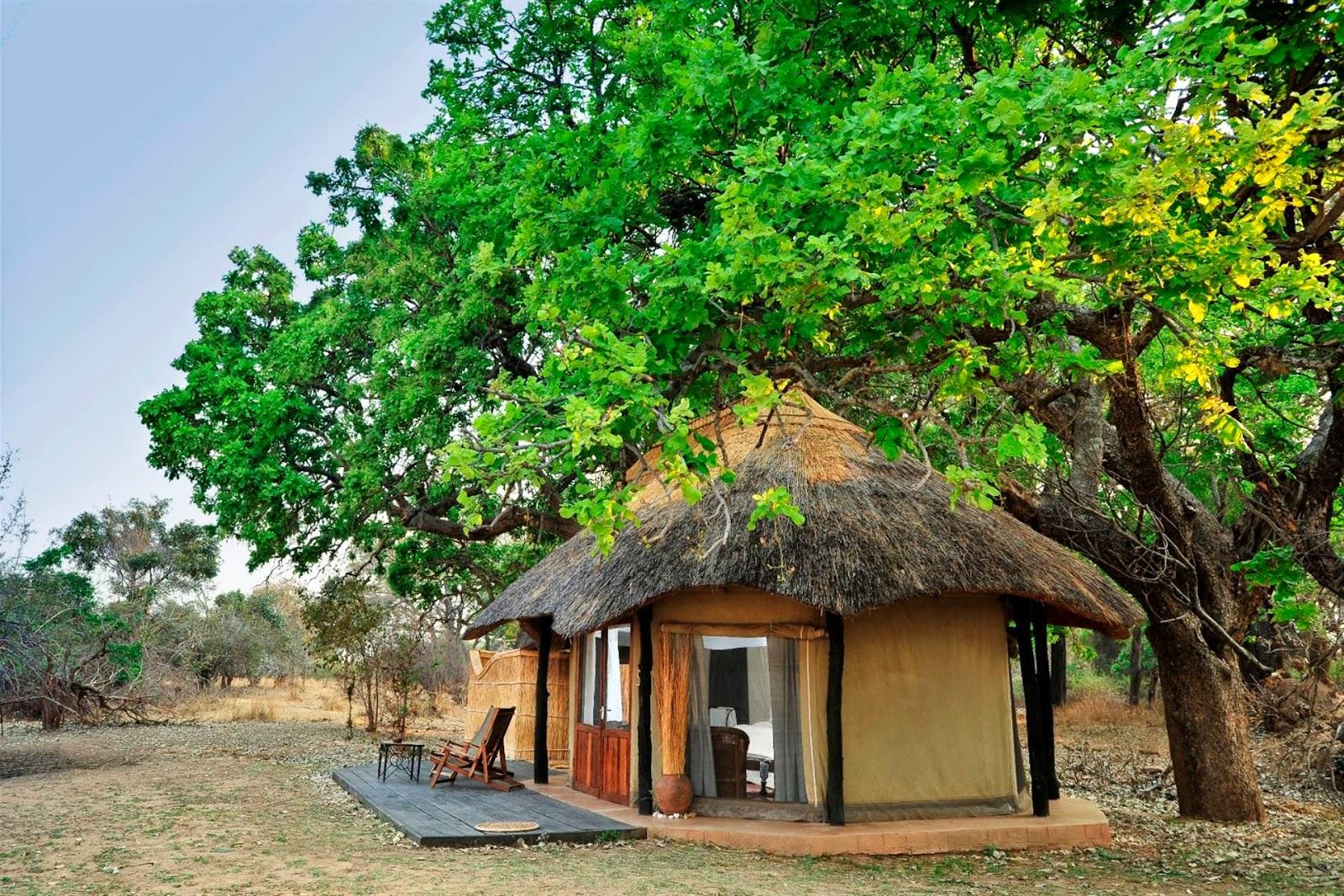 Mchenja Zambia