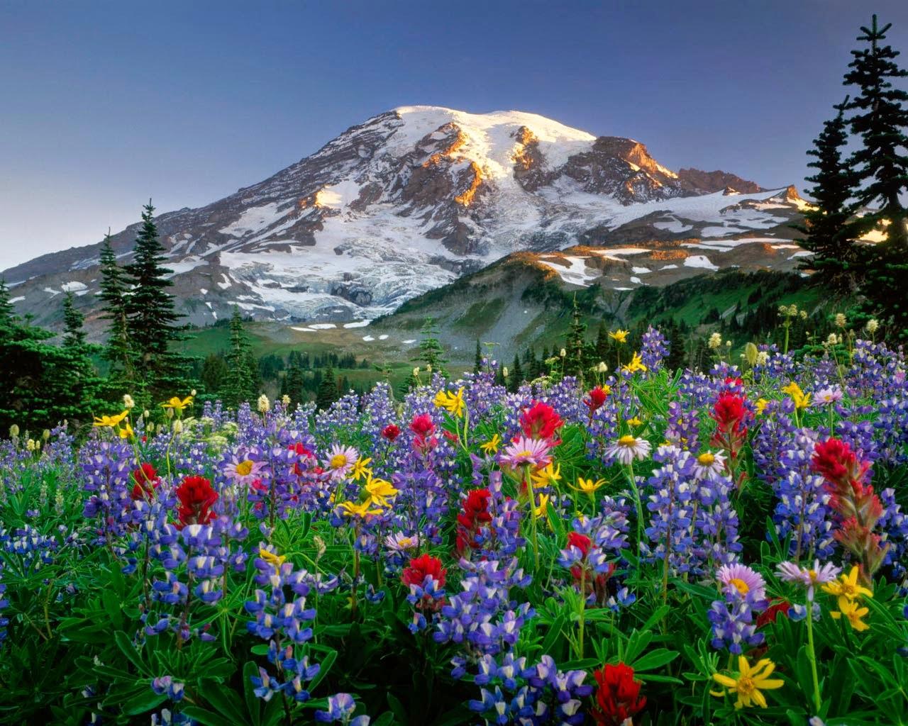 Resultado de imagen de paisaje natural