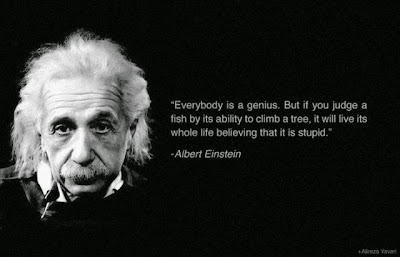 Respect Different Abilities and Potentials - Einstein