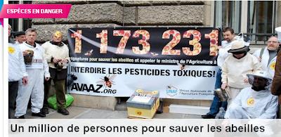 Les pesticides Les Abeilles et l'écosystème