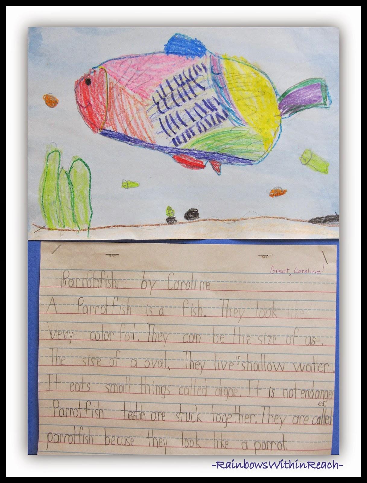 Ocean Writing {Ocean RoundUP at RainbowsWithinReach}
