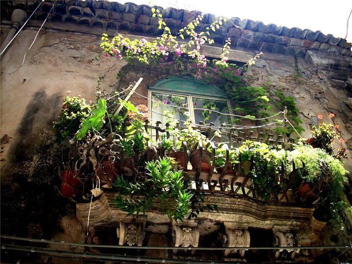 Beautiful Balcony Gardens Kerala Home Design And Floor Plans