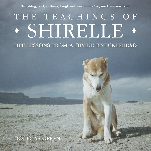 the teachings of shirelle cover