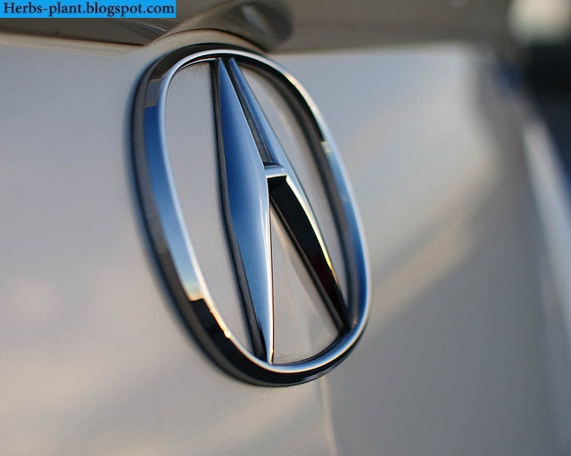 Acura mdx car 2013 logo - صور شعار سيارة اكورا ام دي اكس 2013