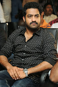 Jr NTR latest photos gallery-thumbnail-16