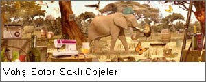 Vahşi Safari