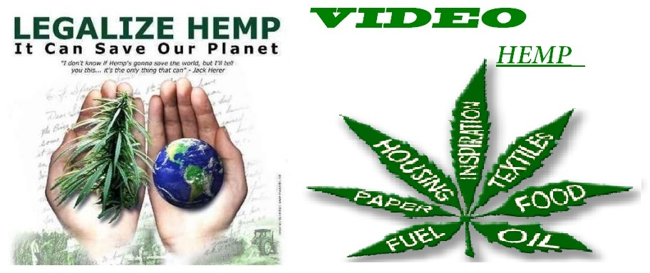 VÍDEO HEMP