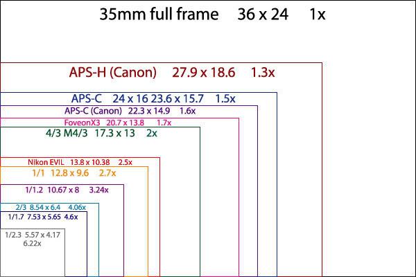 Canon 7D Mark 2 - 晨枫 - 晨枫小苑