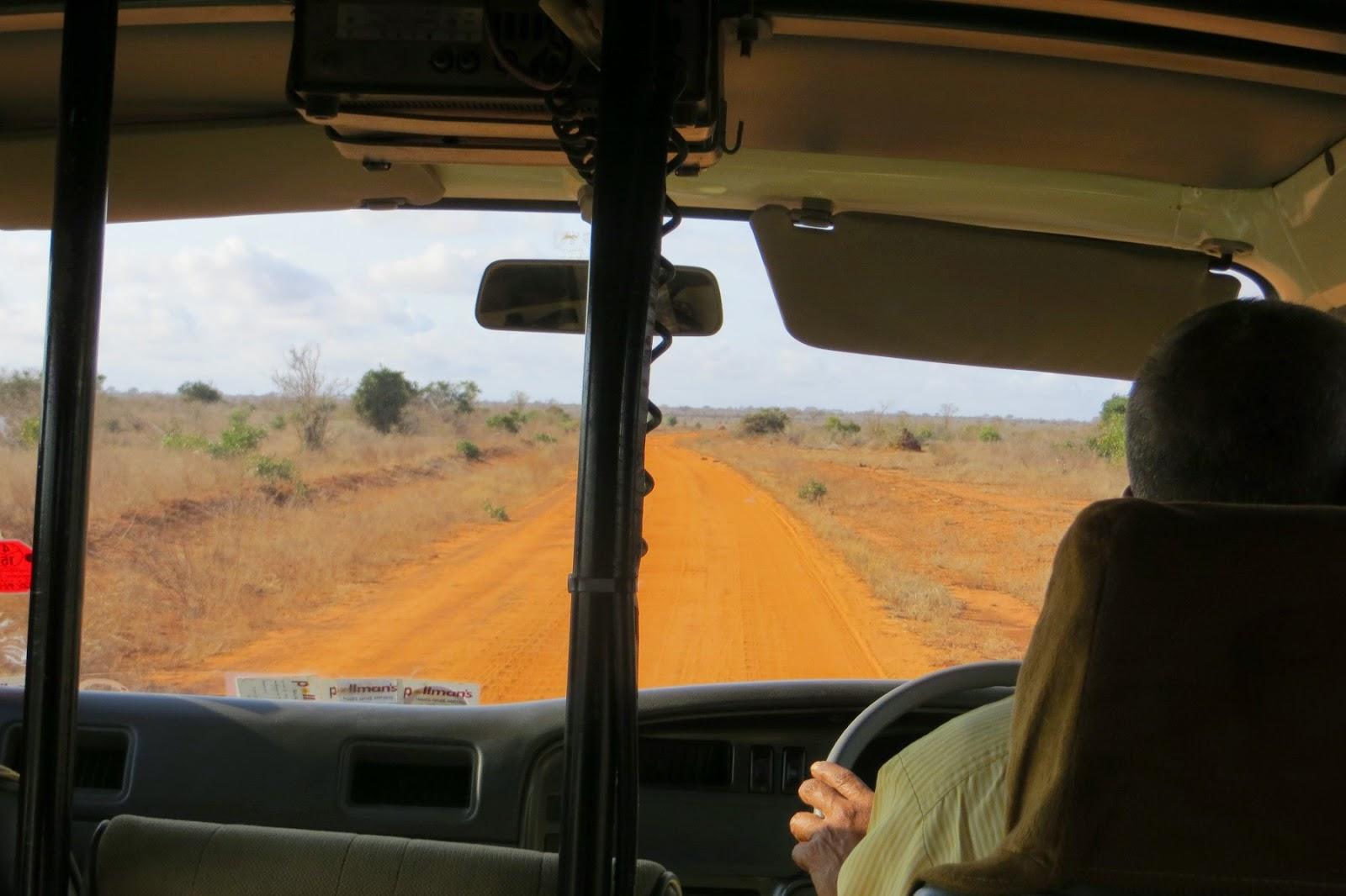 come organizzare un safari in kenya