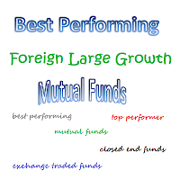 Best Performing Foreign Large Growth Mutual Funds 2013