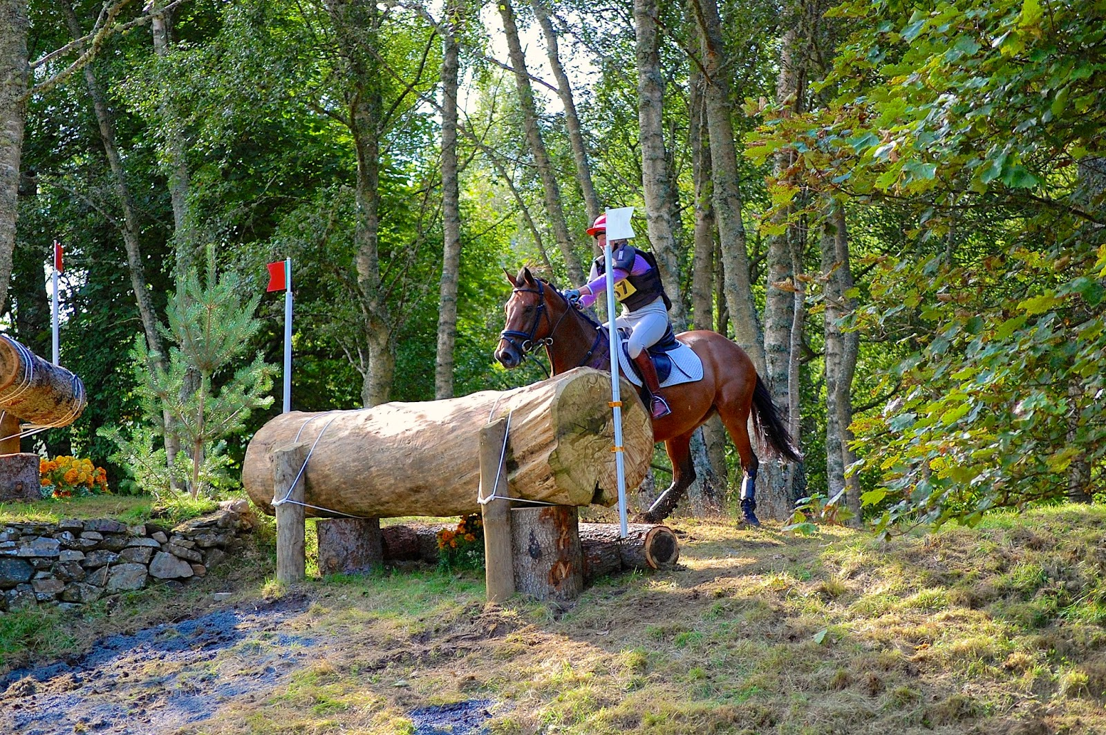 Blair Castle International Horse Trials; horse crash 2