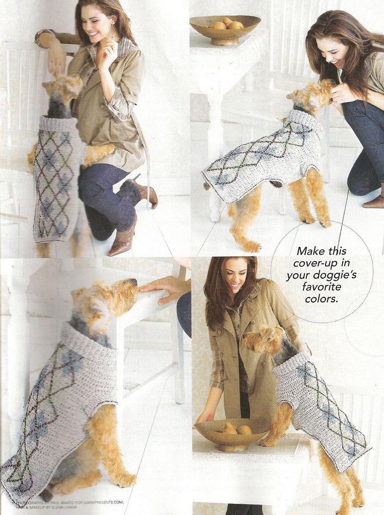 Fantástico Perro Libre De Patrones De Ganchillo Suéter Imágenes ...