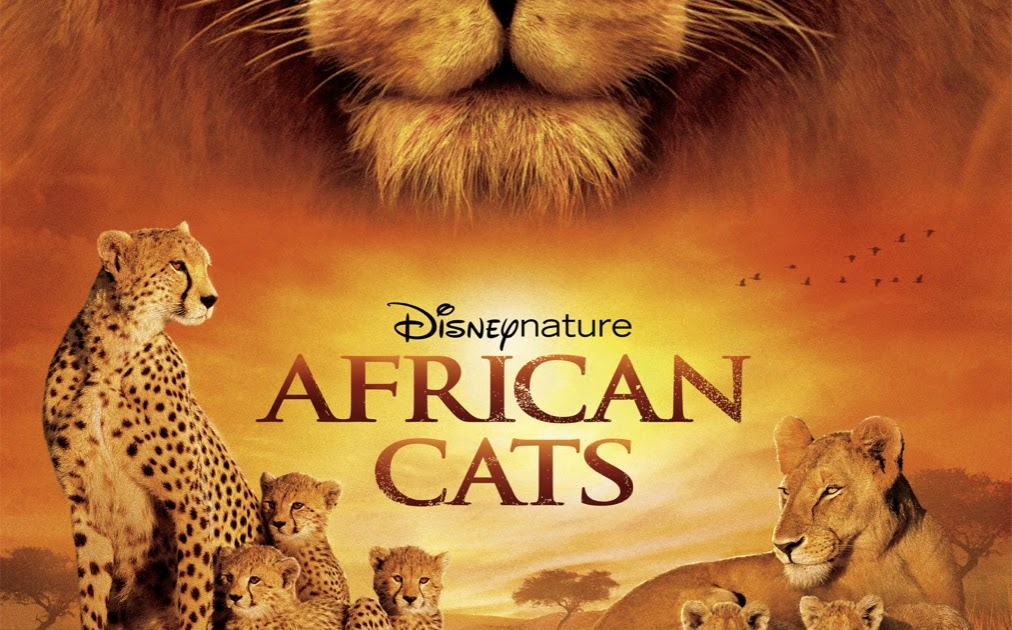 hollywood movie trailer  african cats  2011
