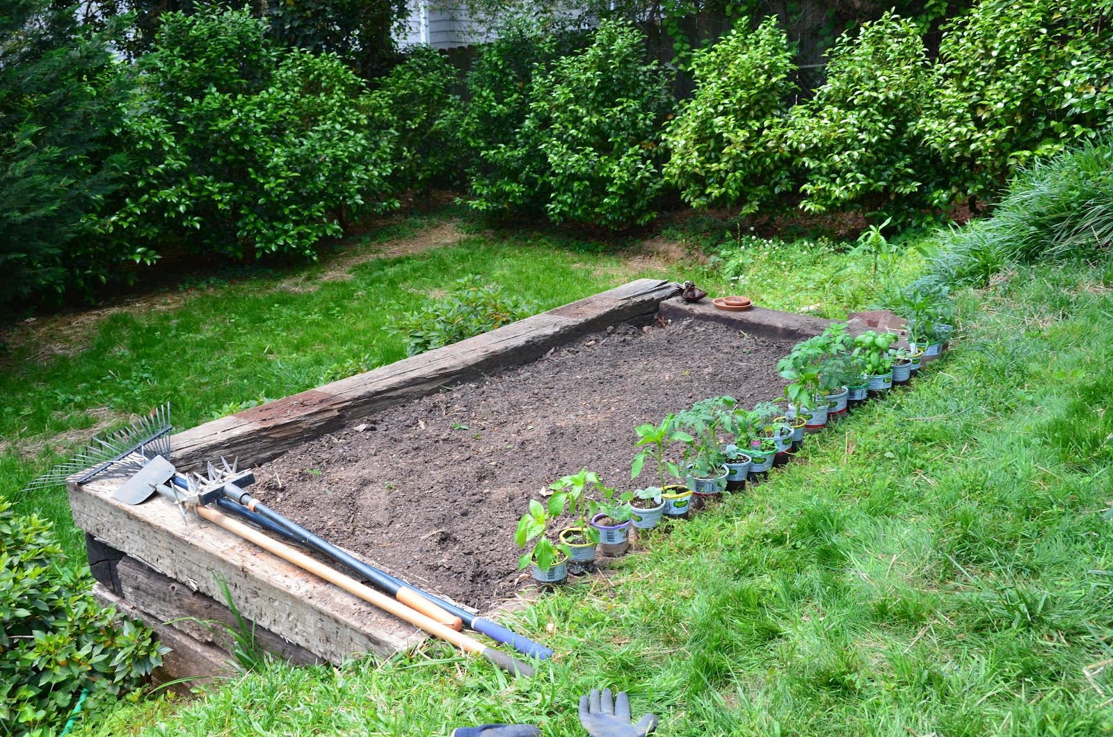 We built our railroad tie garden bed and planted a vegetable garden