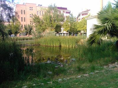 Murcia de cerca jard n de la seda murcia for Jardin de la polvora murcia