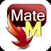 Android video indirme uygulaması, TubeMate