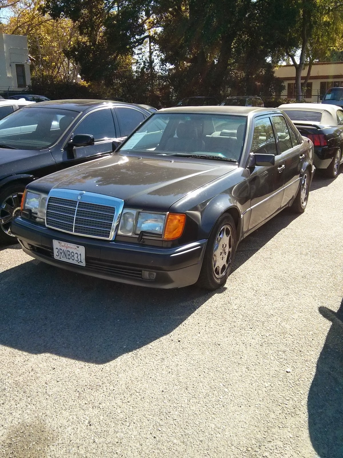 Tamerlane 39 s thoughts w124 500e mercedes for sale for Mercedes benz w124 for sale