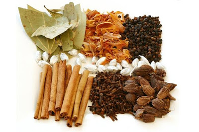 Trị bệnh đường hô hấp với thuốc Đông y
