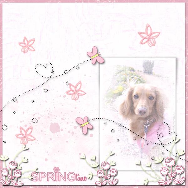 DSB  Springtime 2
