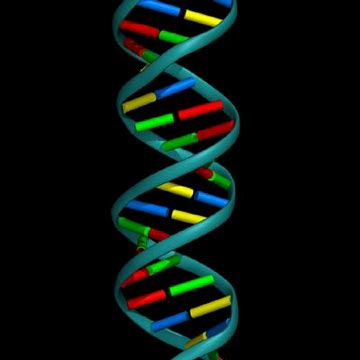 Unseen Rare Collection Dna Damagedna Double Helix Structuredna