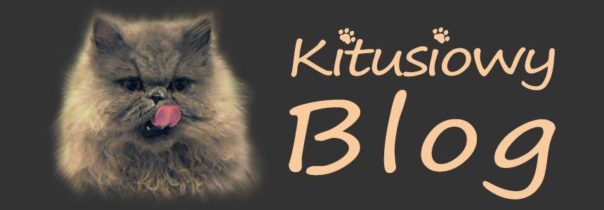 Kitusiowy blog