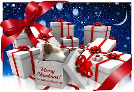 Merry Christmas Kjelle and family!