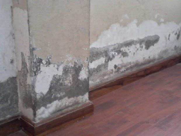 El maestro de obras xavier valderas las eflorescencias - Como quitar las manchas de humedad de las paredes ...