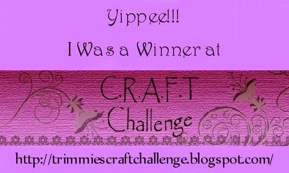 Winner challenge 261, 265 & 289
