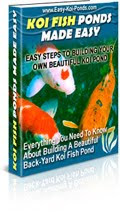 BUILD AN EASY KOI POND