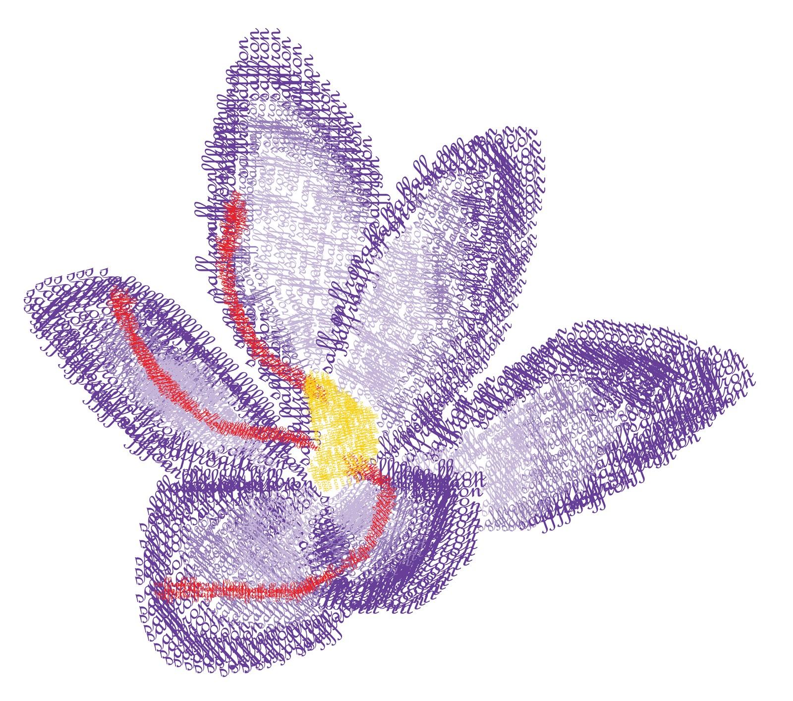Jasmine Vanilla saffron flower type drawing and fruit