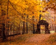 Autumn Colors Abound