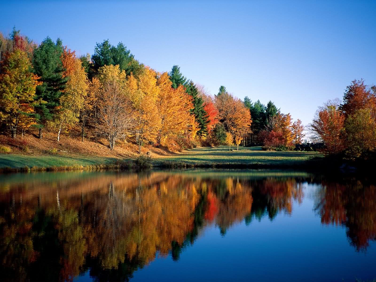 Jesen - fotografije - Page 4 Jesen