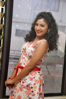 Actress Vishnu Priya Latest Pictures in Short Dress at Nenu Naa Friends Movie Press Meet  23.JPG