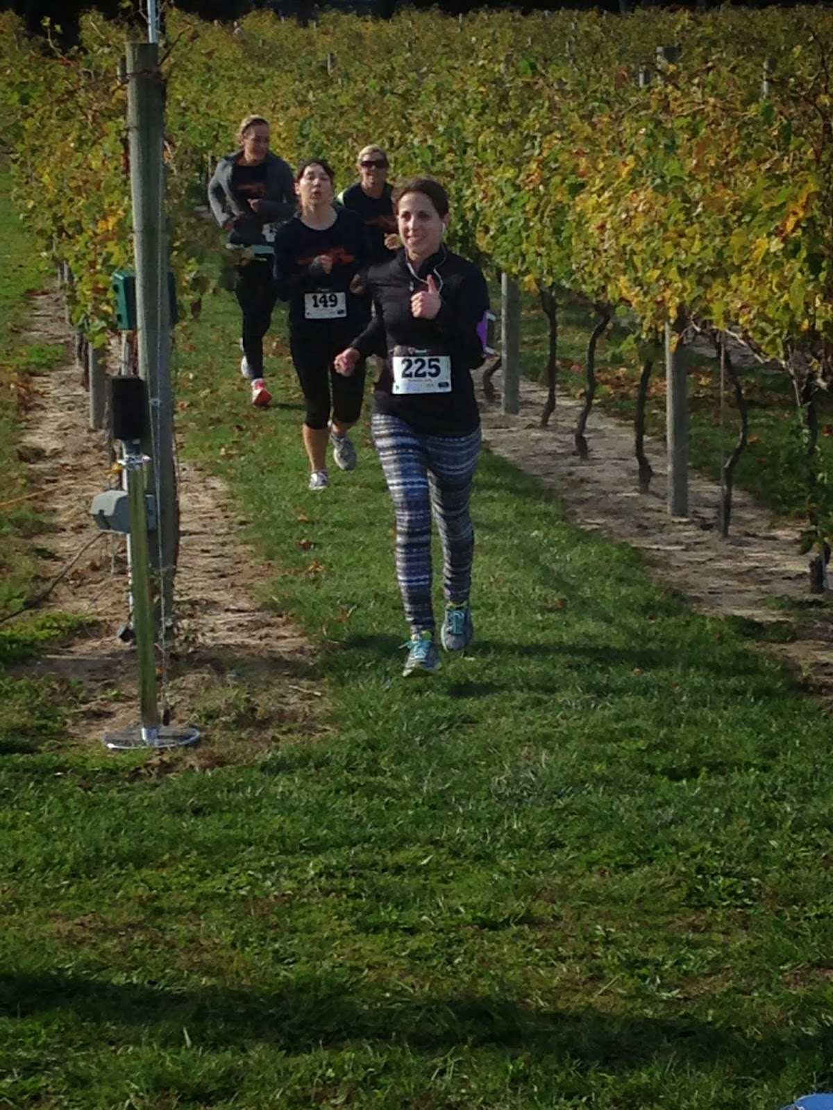 run the vineyards 5k course