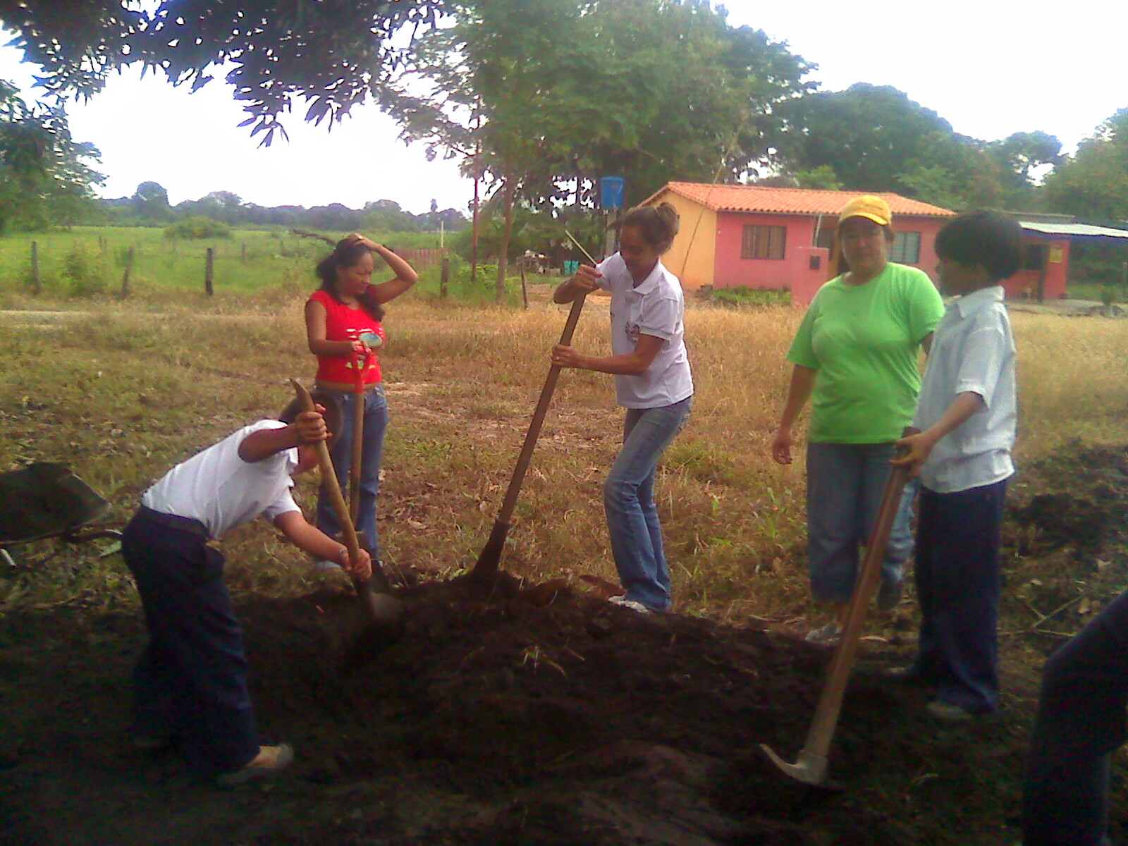 Plan de gesti n ambiental para la construcci n de viveros for Construccion de viveros