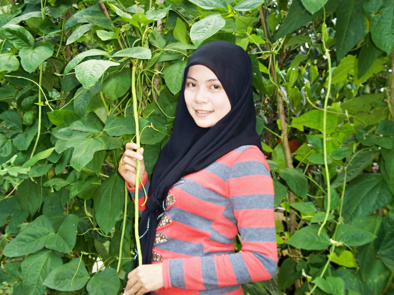 Search Results for 'Makalah Pertumbuhan Tanaman Kacang Hijau.html'
