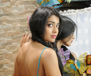 Shriya Saran Hot Wallpaper
