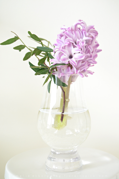 bud vases, spring flowers, whiskey glass