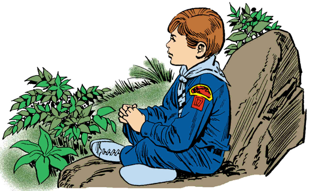 This is a photo of Handy Cub Scout Graphics
