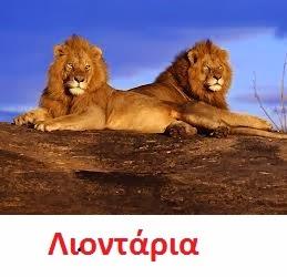 https://dl.dropboxusercontent.com/u/72794133/%CE%96%CE%A9%CE%91/lion3.wav