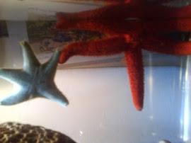 Mis dos estrellas